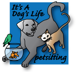 Dogs Life Pet Sitting